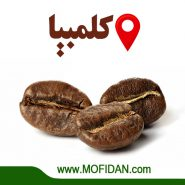 arabica-coffee-seeds