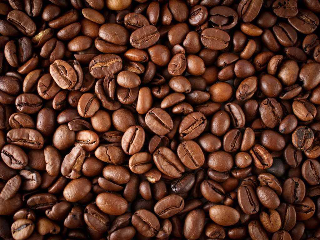 خرید-قهوه-اوگاندا