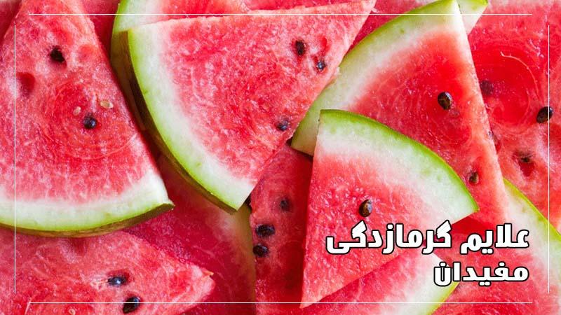 درمان-گرمازدگی-هندوانه