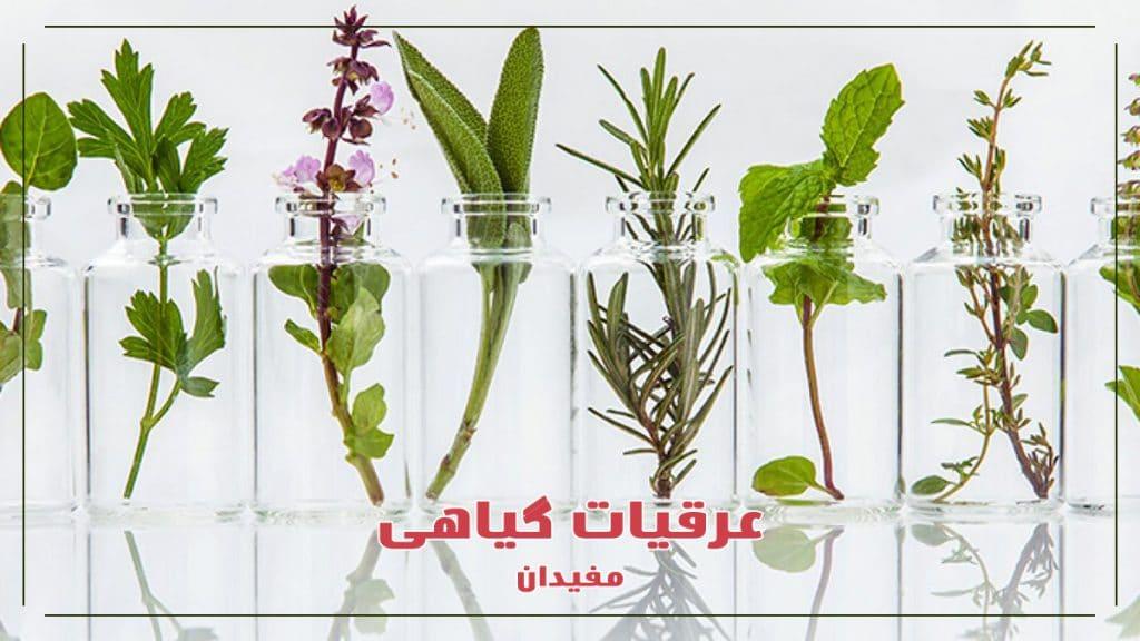 عرقیات-گیاهی-خواص-میزان-مصرف