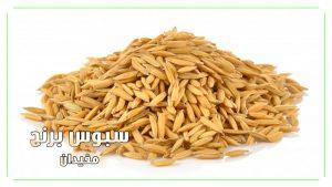 سبوس-برنج