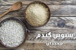 bran-wheat-01