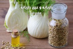 fennel-seed-extract-benefits