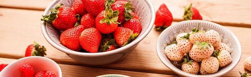 سبزیجات و میوه های فاقد گلوتن